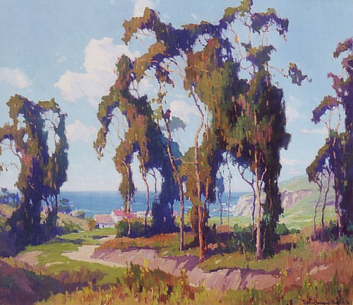 Marion Wachtel - Coastal Eucalyptus